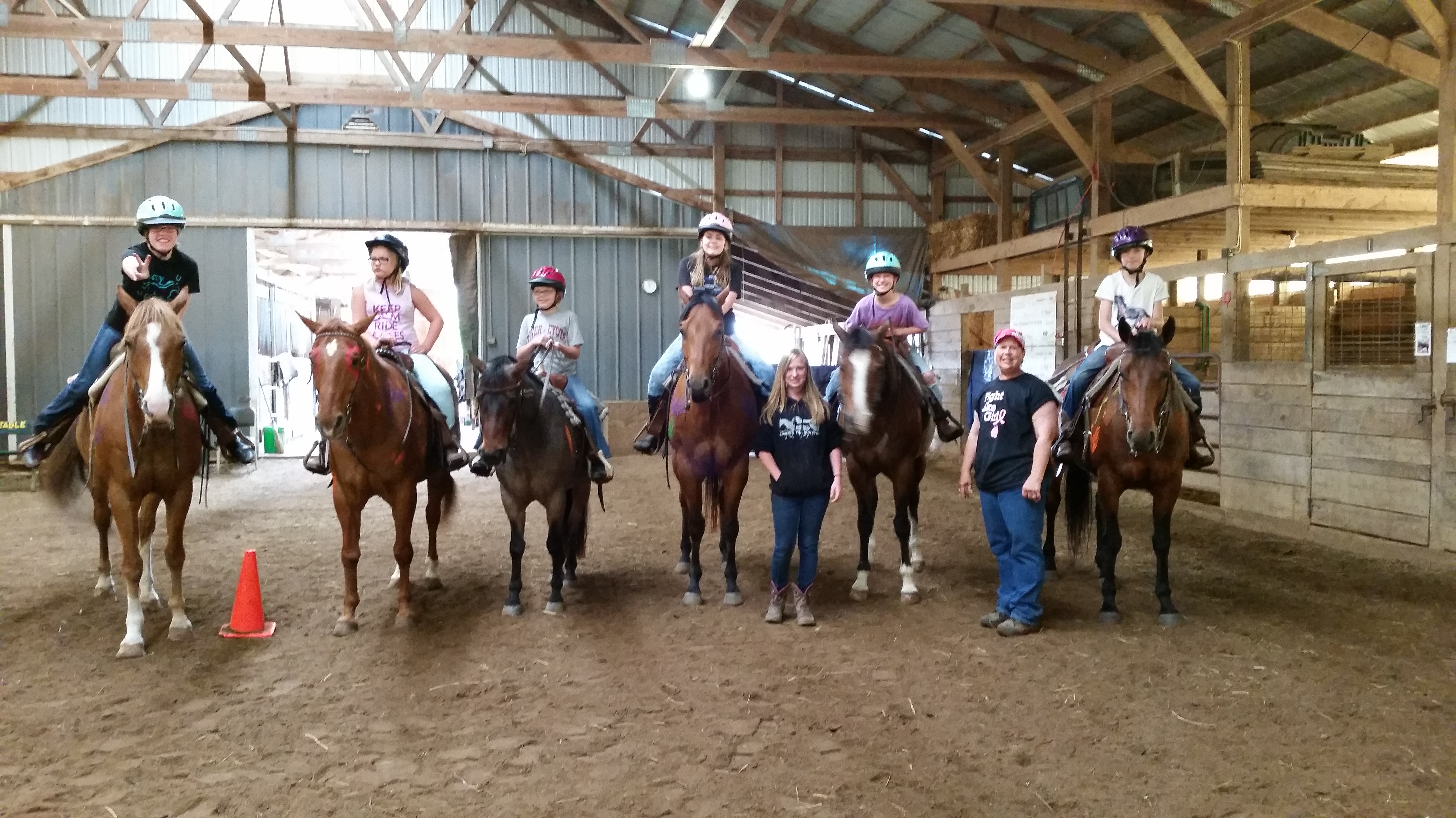 Horses For Sale Barl Stable